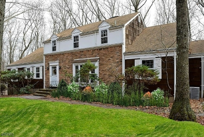 Parsippany Single Family Home For Sale: 35 High Ridge Rd