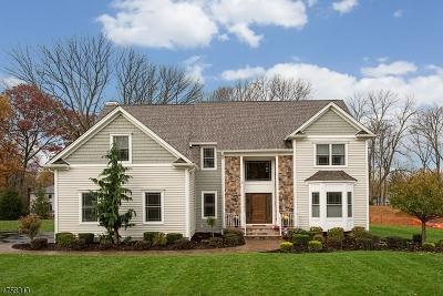 Roxbury Twp. Single Family Home For Sale: 4 Shepherds Ln