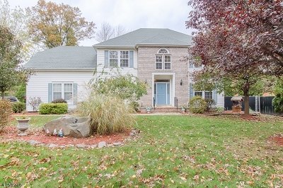 Parsippany-Troy Hills Twp. Single Family Home For Sale: 350 Vail Rd