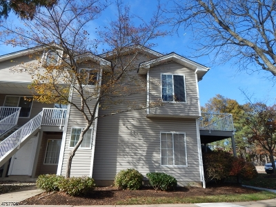 Bedminster Twp. Condo/Townhouse For Sale: 16 Cedar Ct