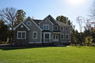 Bridgewater Twp. Single Family Home For Sale: 266 Leeham Ave