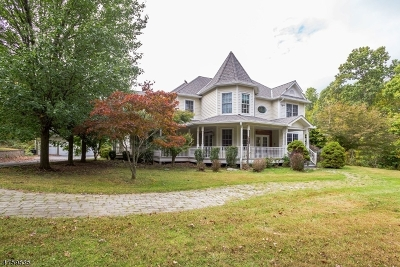 Single Family Home For Sale: 13 Stone Ridge Rd