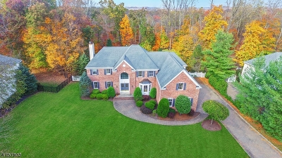 Warren Twp. Single Family Home For Sale: 8 Orchard Way