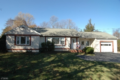 Roxbury Twp. Single Family Home For Sale: 74 S Hillside Ave