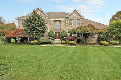 Warren Twp. Single Family Home For Sale: 10 Bailiwick Dr