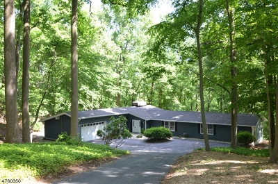 WATCHUNG Rental For Rent: 278 Ridge Rd