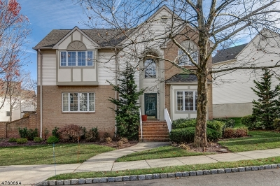 West Orange Twp. Condo/Townhouse For Sale: 1047 Smith Manor Blvd