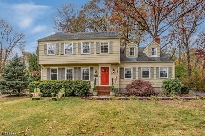 Single Family Home For Sale: 051 Hanover Rd