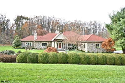 Delaware Twp. Single Family Home For Sale: 51 Ferry Road