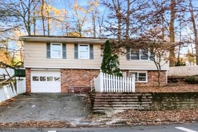Sparta Twp. Single Family Home For Sale: 39 Hillside Rd