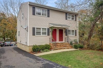Bernardsville Boro Multi Family Home For Sale: 18 Bodnar St
