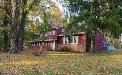 Scotch Plains Twp. Single Family Home For Sale: 12 Unami Ln