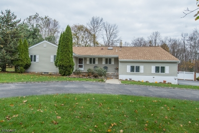 Montville Twp. Single Family Home For Sale: 4 Beverly Dr