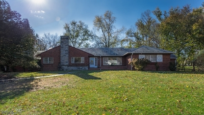 Bridgewater Twp. Single Family Home For Sale: 670 Hawthorne Avenue