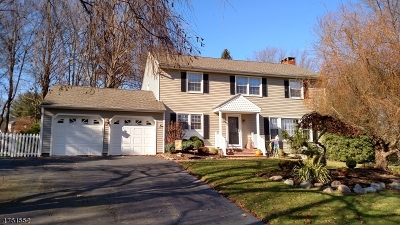 Roxbury Twp. Single Family Home For Sale: 53 Forest Dr