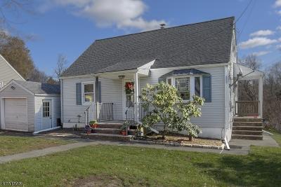 Randolph Twp. Single Family Home For Sale: 6 Birchwood Rd