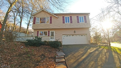 Sussex County Single Family Home For Sale: 25 Divito Trl