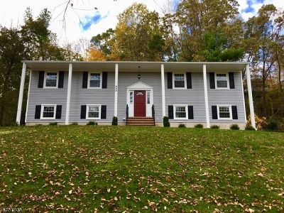 Morris Twp. Single Family Home For Sale: 233 Western Ave