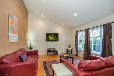 West Orange Twp. Single Family Home For Sale: 18 Amelia St
