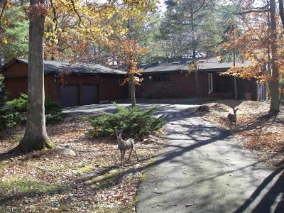 Bridgewater Twp. Single Family Home For Sale: 1002 Sunset Rdg