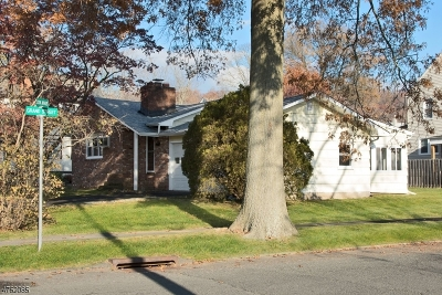 Scotch Plains Twp. Single Family Home For Sale: 333 Cook Ave