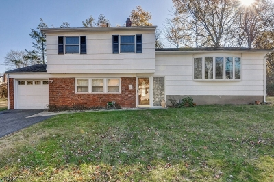 West Orange Twp. Single Family Home For Sale: 11 Nance Rd