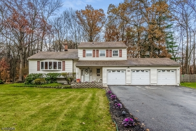 Berkeley Heights Single Family Home For Sale: 38 Greenbriar Dr