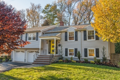 WESTFIELD Single Family Home For Sale: 612 Willow Grove Rd