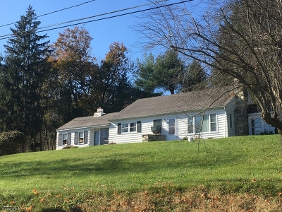 Franklin Twp. Single Family Home For Sale: 402 Pittstown Rd