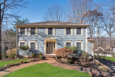 Morris Twp. Single Family Home For Sale: 8 Heather Ln