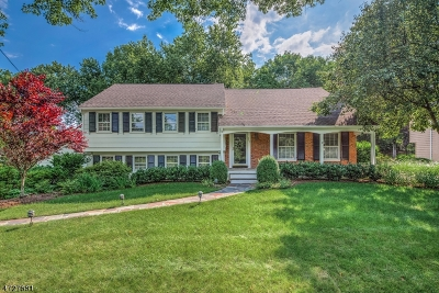 Millburn Twp. Single Family Home For Sale: 247 Parsonage Hill Rd