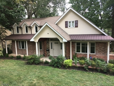 South Orange Village Twp. Single Family Home For Sale: 198 Underhill Rd