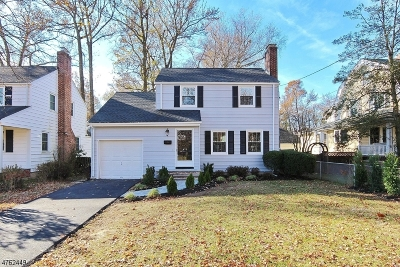 WESTFIELD Single Family Home For Sale: 856 Rahway Ave