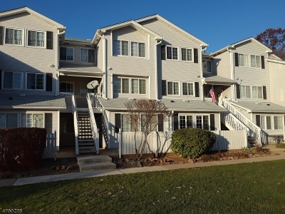 Bedminster Twp. Condo/Townhouse For Sale: 29 Parkside Rd #29