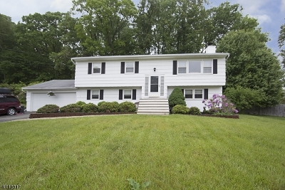 Mount Olive Twp. Single Family Home For Sale: 7 Brookside Dr