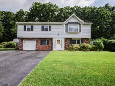 Mount Olive Twp. Single Family Home Active Under Contract: 13 Brookside Dr