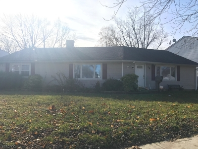 Edison Twp. Single Family Home For Sale: 34 Stony Rd