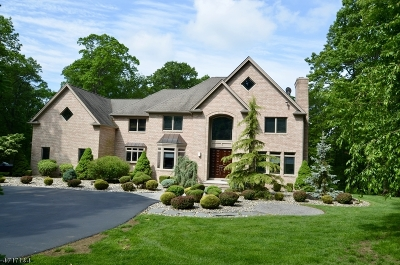 Randolph Twp. Single Family Home For Sale: 1 Sherwood Ct