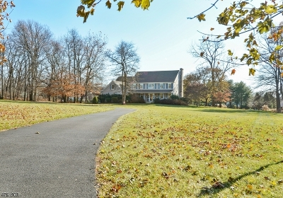 Franklin Twp. Single Family Home For Sale: 6 Lenape Springs Rd
