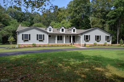 Scotch Plains Twp. Single Family Home For Sale: 8 Jacobs Ln
