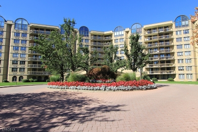 West Orange Twp. Condo/Townhouse For Sale: 10 Smith Manor Blvd #603