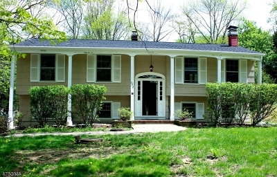 Randolph Twp. Single Family Home For Sale: 172 Park Ave