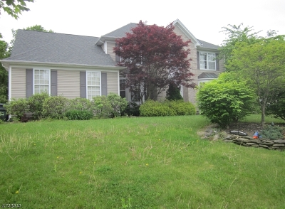 Mount Olive Twp. Single Family Home For Sale: 43 Dorset Drive