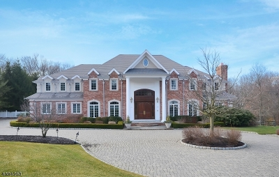 Warren Twp. Single Family Home For Sale: 38 Geiger Ln