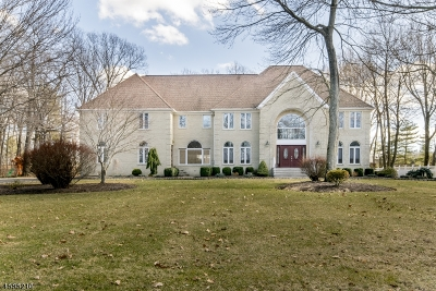 Randolph Twp. Single Family Home For Sale: 14 Castle Ct