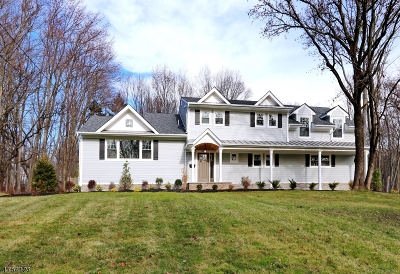Scotch Plains Twp. Single Family Home For Sale: 2054 Winding Brook Way