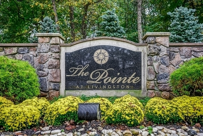 Livingston Condo/Townhouse For Sale: 3103 Pointe Gate Dr