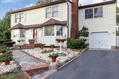 East Brunswick Twp. Single Family Home For Sale: 4 Channing Rd