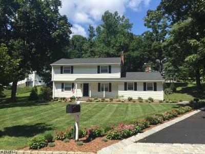 Bernardsville Boro Single Family Home For Sale: 58 Seney Dr
