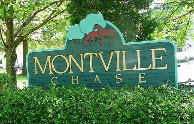 Montville Twp. Condo/Townhouse For Sale: 10 Davenport Road